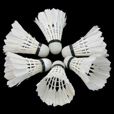 6x Durable Training White Goose Feather Shuttlecocks Birdies Badminton Ball Game