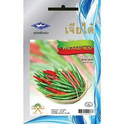 Thai bird pepper 106 seeds 1 package from chai tai for Giant chilli thai