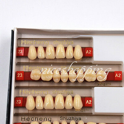 Dental 3 Set of 84*1 Acrylic Resin Denture Teeth VITA Color A2 Upper Lower Shade
