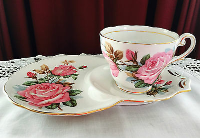 Vintage Royal Standard England Fine Bone China'roses Picardy' Tennis Set C1940's