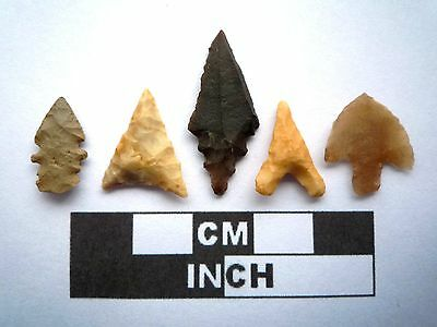 5 x High Quality Neolithic Arrowheads - 4000BC - (K009)