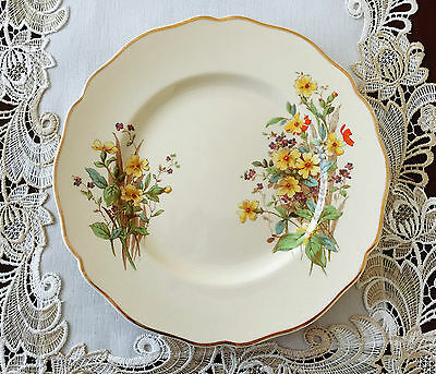 Vintage Royal Doulton Made In England 'somerset' D6029 Dinner Plate C1940's