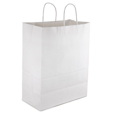 25 Paper Retail / Shopping Bag 13x7x17 WHITE with Rope Handle MART