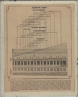 Rare 1908 Musical Scale Acoustic Keyboard Chart Wind Instrument Percussion Voice