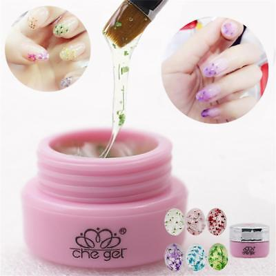 6 colors 3D Decoration Real Dry Dried Flower for UV Gel Acrylic Nail Art tips