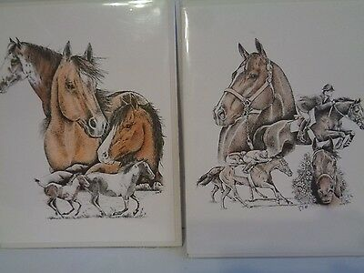 Pet Notes 2 Horse Cards Colored MUSTANG THOROUGHBRED  Pictures and Description