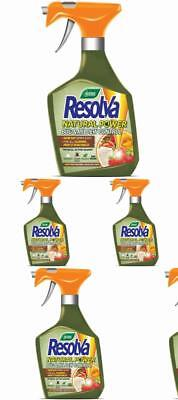 Bug And Mildew Control Spray Ready To Use Resolva Natural Power 1 L New UK *