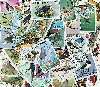 Birds of the World - 100 Different Stamps Selection from Many Countries Freepost