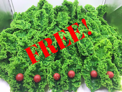 Fake Food Realistic KALE LEAVES 100pcs Faux Food Replica Garnish Display Prop