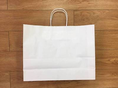 Paper Retail Carry Bags w/ Twist Handle Only $125 for 250 Pieces!