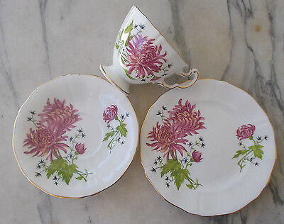Vintage Adderley Trio Cup, Saucer & Plate Pattern # H606 MINT High Tea Set