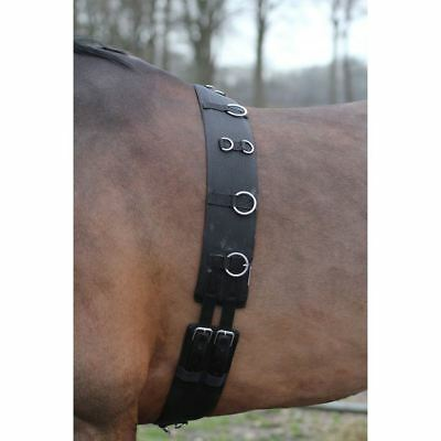 Horka Equestrian Lunging Girth Bridle Pony Cob Full Strong Durable Black