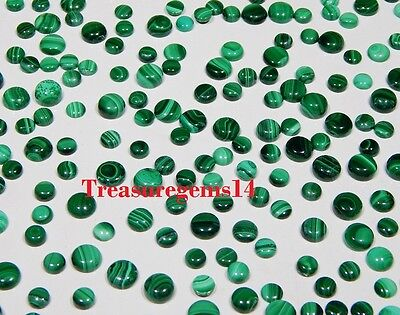150 Ct Wholesale Lot Natural Green Malachite Calibrated Round Cabochon Gemstones