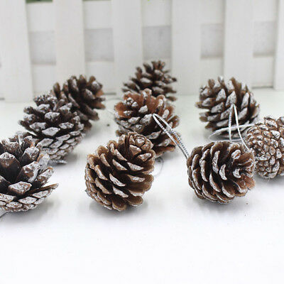 9x Real Natural Small Pine cones for Christmas Craft Decorations White Paint