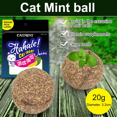 Pet Cat Mint Ball Catnip Cats Addictive Playing Toy 1Pcs 3.2cm Diameter Funny