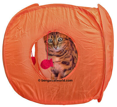 Cat Kitten Play Fun Exercise Cube Tent Three Dangle Toys Pop Up Strong Flexible