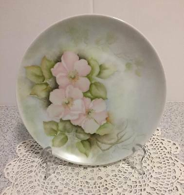 Hand Painted Porcelain Plate