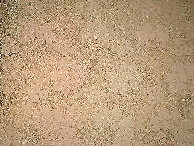 """Antique Vintage Ivory Embroidered Lace on Net Fabric Early 1900s 10' by 13"""""""