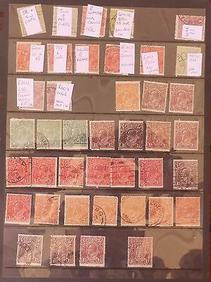 41 x KGV Heads, All with a Variety