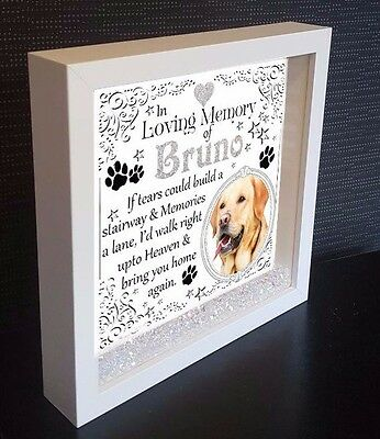 PERSONALISED BOX SHADOW Frame In Loving Memory Dog Cat Remembrance ...