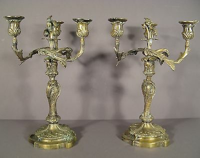 Pair Of Candelabra Antique Louis Xv Rockery Bronze Golden / Candelabra Bronze