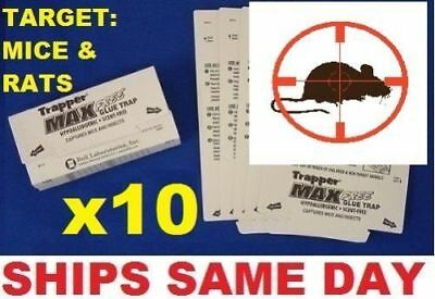 10x TrapperMax Professional sticky Cockroach Spider Mouse Insects Glue traps