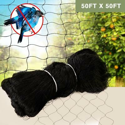 "50X50FT Anti Bird Netting Garden Poultry Aviary Game Net Nylon 2.4"" Mesh Screen"