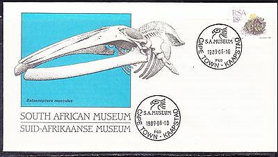 South Africa 1989 - Museum  Souvenir Cover - Unaddressed