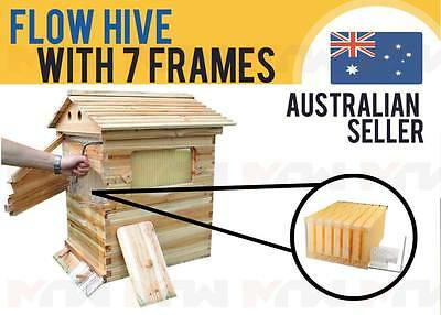 Wooden Beehive Brood House Box Tube +7pcs Auto Flow Honey Hive Frames Beekeeping