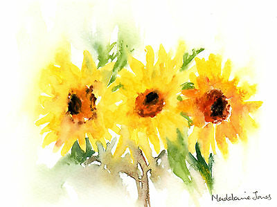 Sunflowers, Original watercolour painting