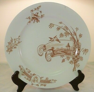 Aesthetic Movement Brown Transferware Nankin Pattern Plate by Grove & Stark 1881