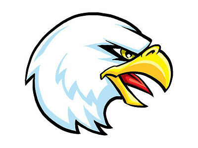 50 - EAGLE Head Temporary Tattoos, School Spirit Mascot Face tattoo ...
