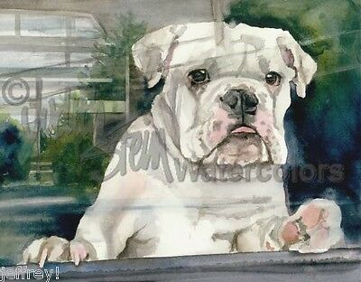 English Bulldog Dog Signed Art Print of Watercolor Painting DOGGIE IN THE WINDOW