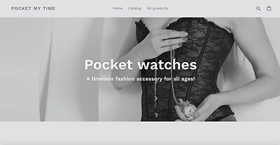 Pocket My Time Dropshipping Online Business
