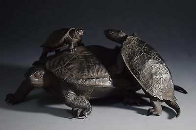 Japanese Antique Bronze Turtle Named Statue Sculpture Ornament Okimono Meiji