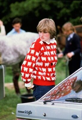 Princess Diana Red Sheep Black sheep sweater pattern to knit!