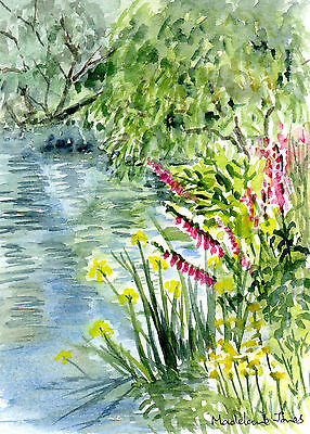 Stream side flowers with yellow Iris, foxgloves, Original watercolour painting