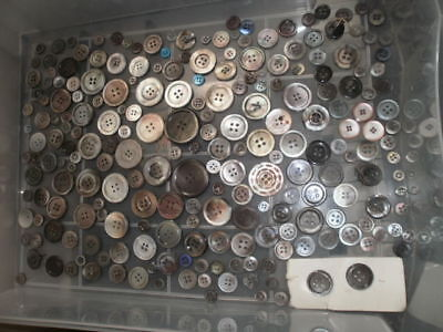 Genuine Abalone Shell Four Hole Antique Buttons Large Lot
