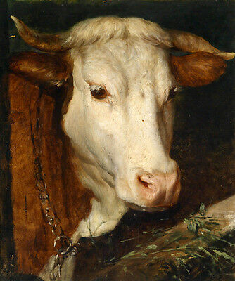 Excellent oil painting Docile animals cow cattle  cowshed with food Hand painted