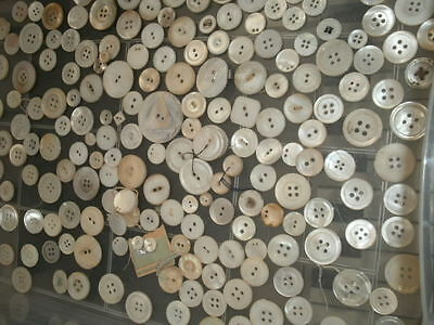 Genuine Mother Of Pearl Shell Antique Buttons Large Lot