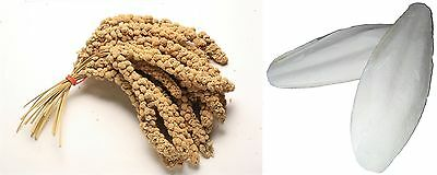 Millet Sprays 1kg + Cuttlefish 500g for all types of cage & aviary birds