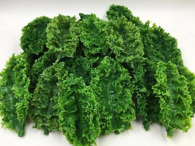 Fake Plastic 12pc KALE LEAVES Realistic Salad Bar Green Garnish Prop Decor Food