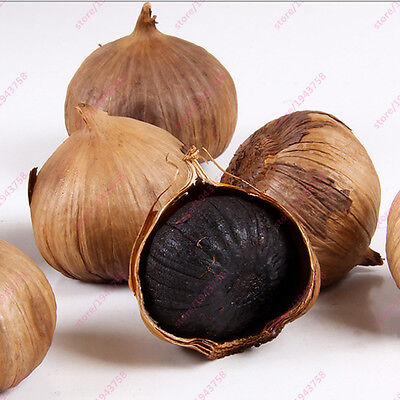 New 100PCS Black Garlic Seeds Pure Natural And Organic Vegetable Seeds Healthy