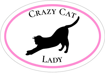Cat Decal - Pink Crazy Cat Lady Vinyl Sticker - Cat Bumper Sticker