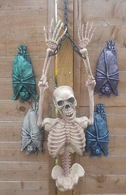 Skeleton torso and Bat halloween ideal parties  NORMALLY £40.92 NOW ONLY £25.99