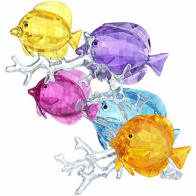 Swarovski Crystal Rainbow Fish Family 5223195.new In Box.