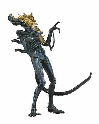 "Aliens - 7"" Scale Action Figure - Series 12 - Blue Battle Damaged Warrior - NECA"