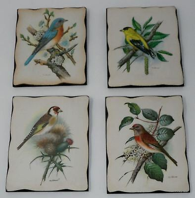 Vintage WILD BIRD Robin Goldfinch Decorettes Wall Plaque Set by GOMMER