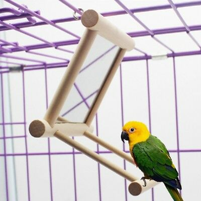Wooden Bird Toy Mirror Stand Platform Toys For Parrots Cockatiel Vogel Toy Pet