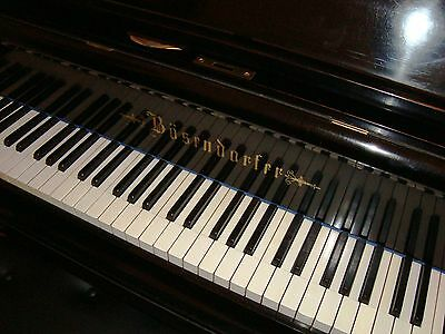 HISTORICAL BÖSENDORFER 250cm Concert Grand Piano Baby fort